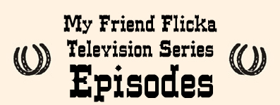 Television Series Episodes